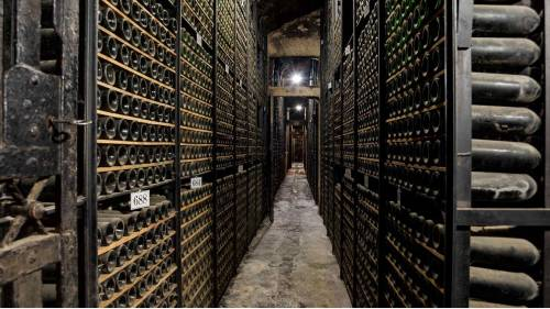 Inside the ancient wine cellar