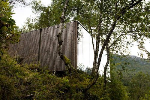 Cabins amongst the forest